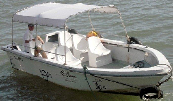 Cano câu cá mua sẵn về là sử ngay